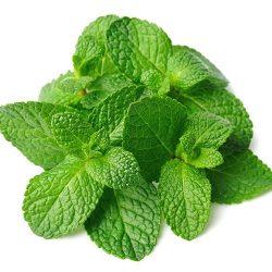 Aroma Spearmint 10ml